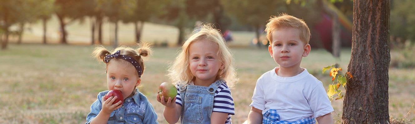 childcare programs fairview heights illinois